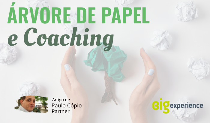 Árvore de papel e coaching